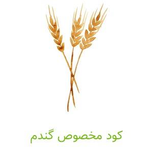 کود مخصوص گندم _ کشاورزی ایران
