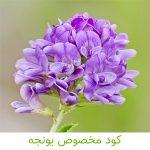 کود مخصوص یونجه-کشاورزی ایران