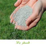 کود فسفر بالا _ کشاورزی ایران